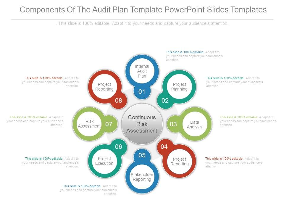 audit plan template