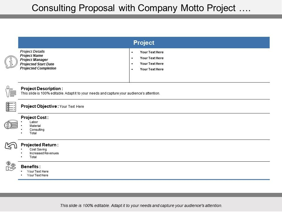 consulting_proposal_with_company_motto_project_Slide01