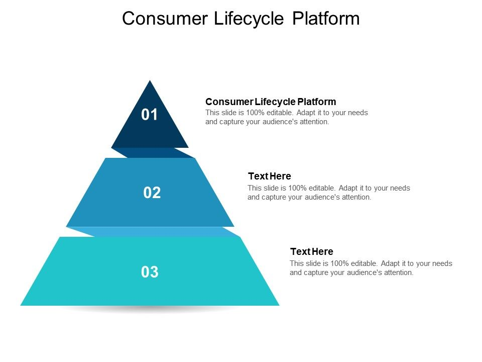 Consumer Lifecycle Platform Ppt Powerpoint Presentation Layouts Layout Ideas Cpb