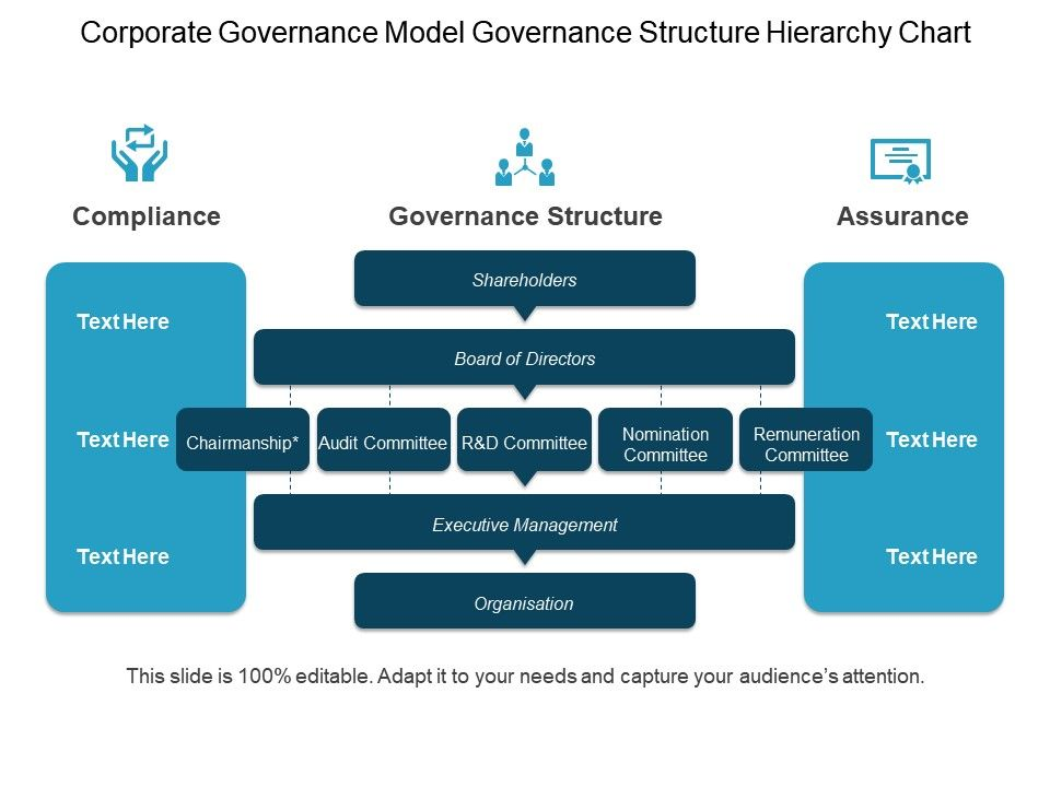 Corporate Governance Model Governance Structure Hierarchy Chart