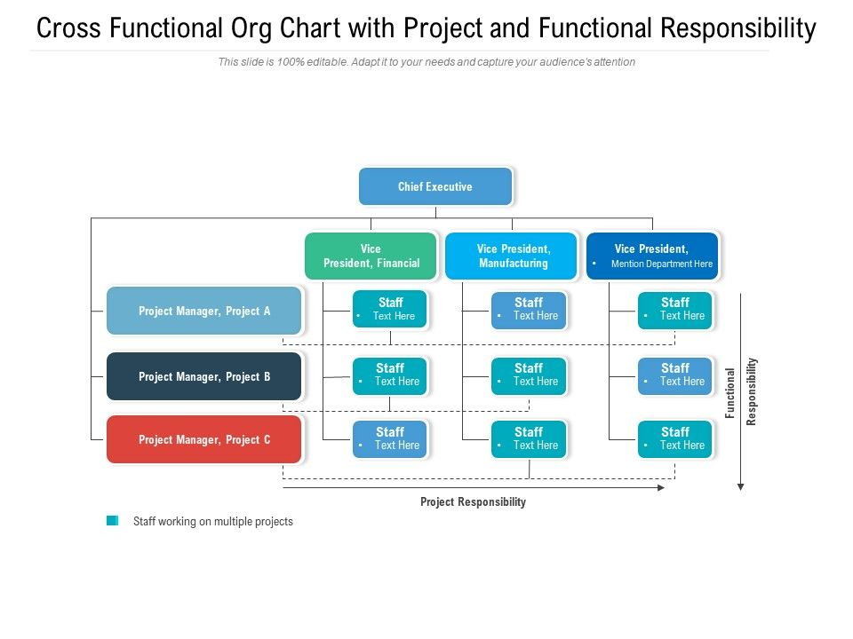 Cross Functional Org Chart With Project And Functional Responsibility