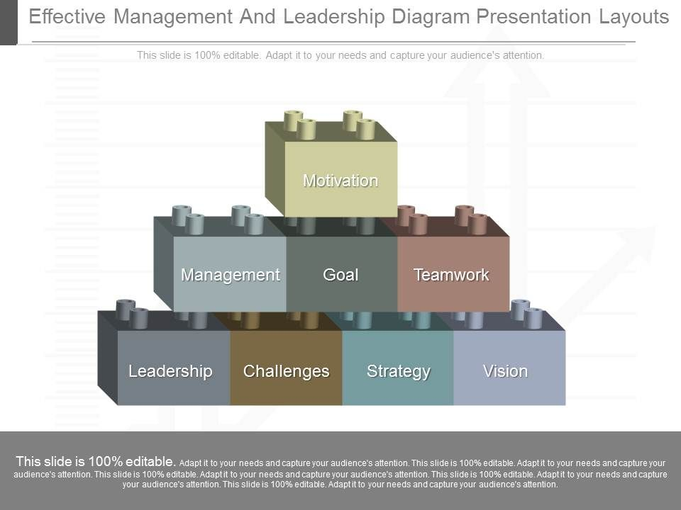 custom effective management and leadership diagram presentation