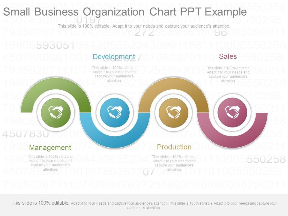 custom small business organization chart ppt example powerpoint
