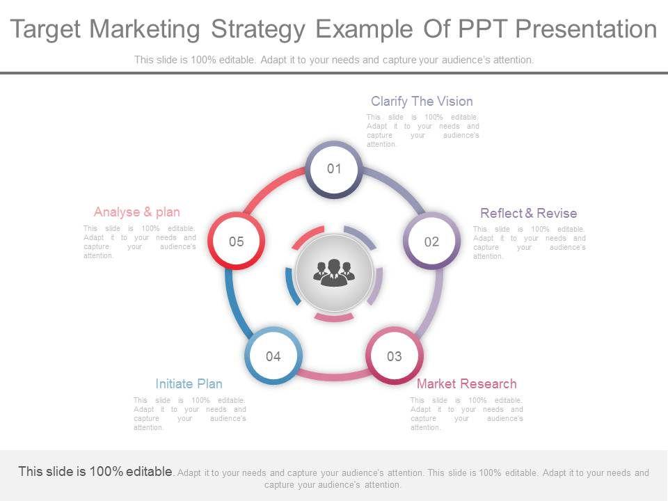 Custom Target Marketing Strategy Example Of Ppt Presentation