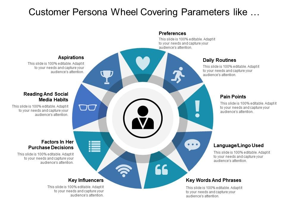 customer_persona_wheel_covering_parameters_like_aspirations_preferences_daily_routines_and_pain_points_Slide01