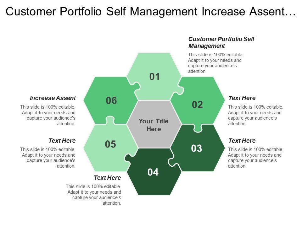 Customer Portfolio Self Management Increase Assent Quality
