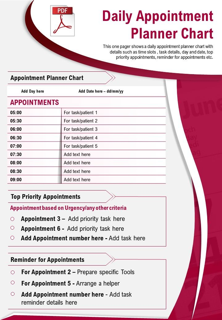 Daily Appointment Planner Chart Presentation Report Infographic PPT PDF Document
