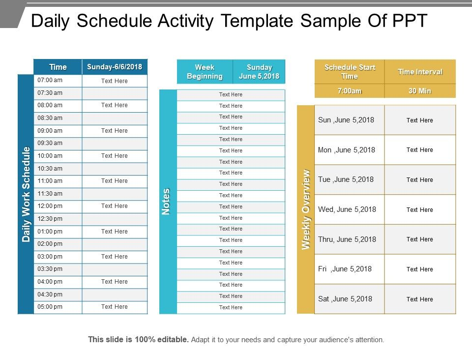 Daily Schedule Activity Template Sample Of Ppt Powerpoint