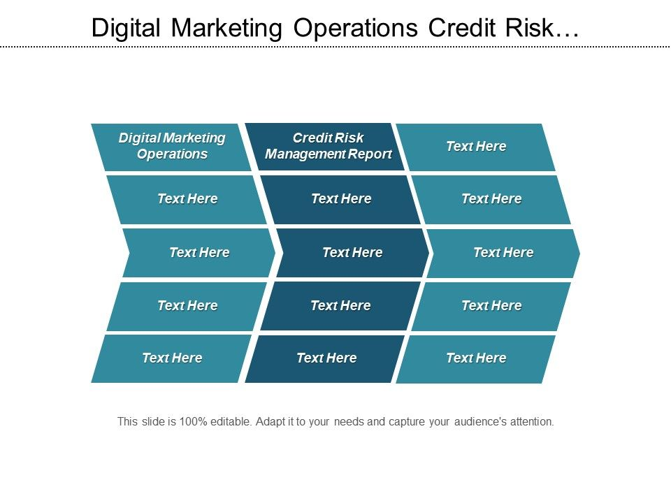 digital_marketing_operations_credit_risk_management_report_business_practice_cpb_Slide01