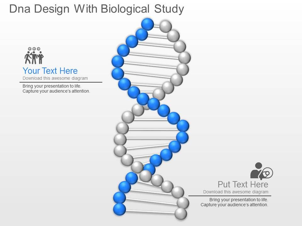 Dna Design With Biological Study Powerpoint Template Slide - Awesome biology ppt template ideas