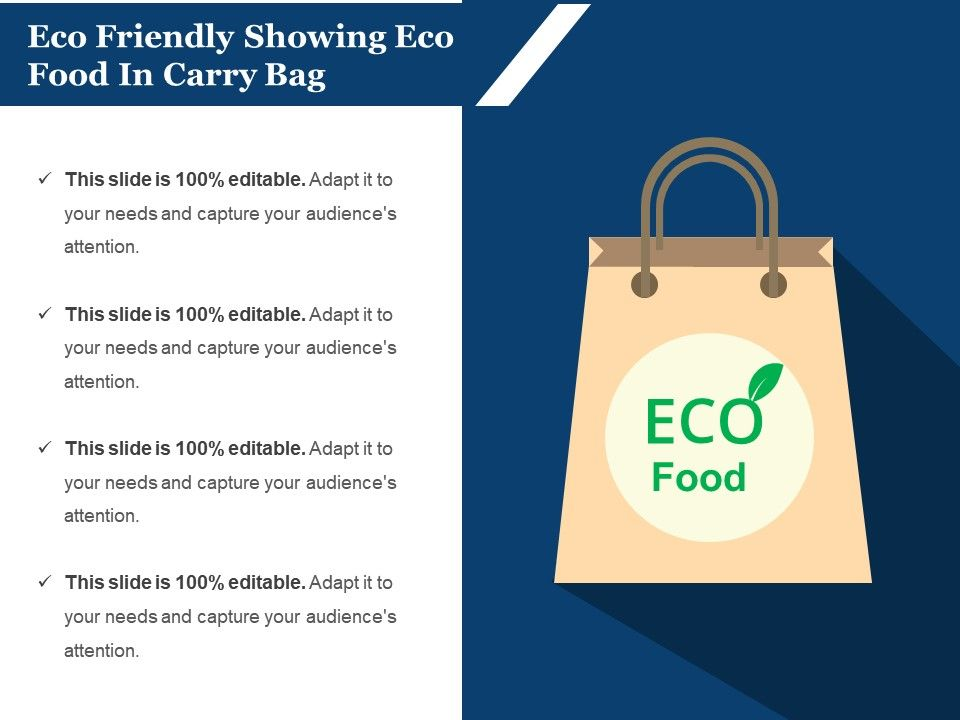 eco_friendly_showing_eco_food_in_carry_bag_Slide01