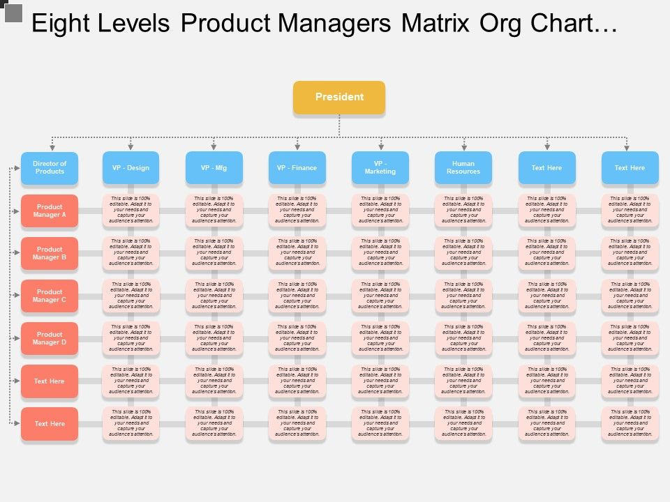 eight_levels_product_managers_matrix_org_chart_template_Slide01