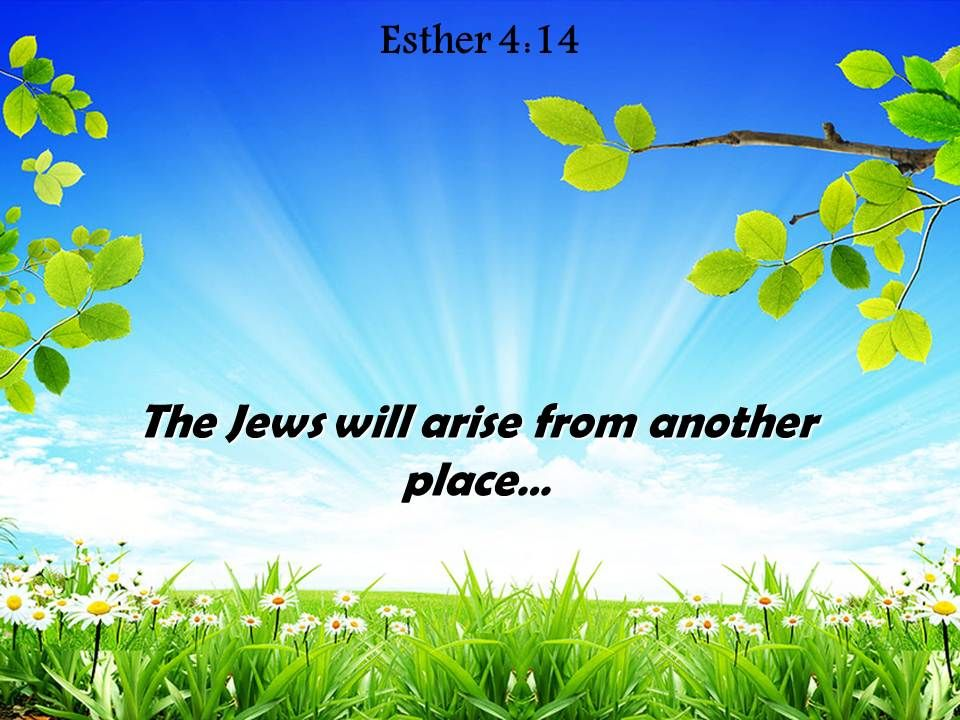 Esther 4 14 the jews will arise from another powerpoint church esther414thejewswillarisefromanotherpowerpointchurchsermonslide01 esther414thejewswillarisefromanotherpowerpointchurchsermonslide02 toneelgroepblik Images