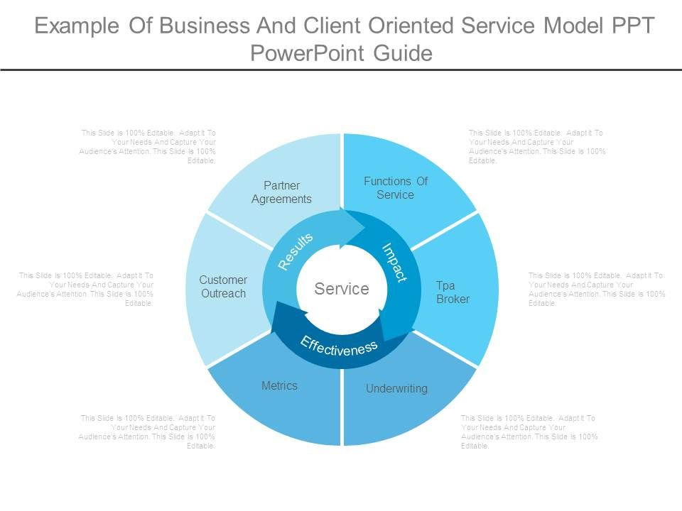 Example Of Business And Client Oriented Service Model Ppt ...