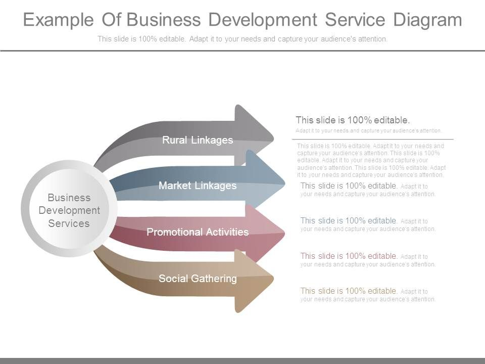 example_of_business_development_service_diagram_Slide01