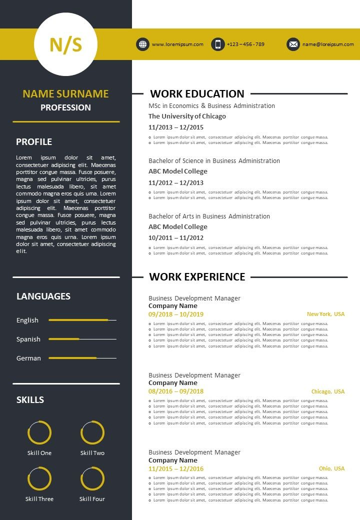 Example Of Curriculum Vitae For Job Application Powerpoint