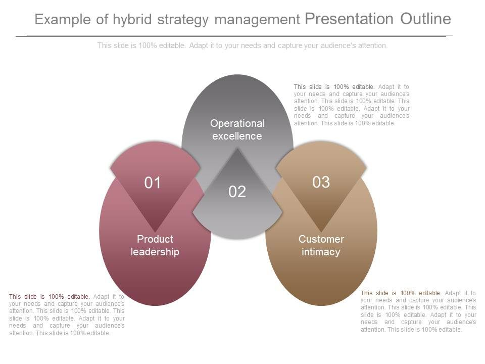 Example Of Hybrid Strategy Management Presentation Outline