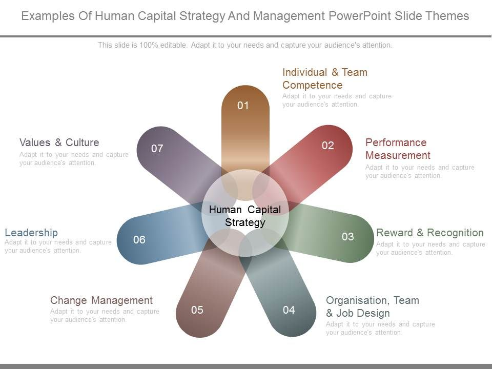 examples of human capital strategy and management powerpoint slide