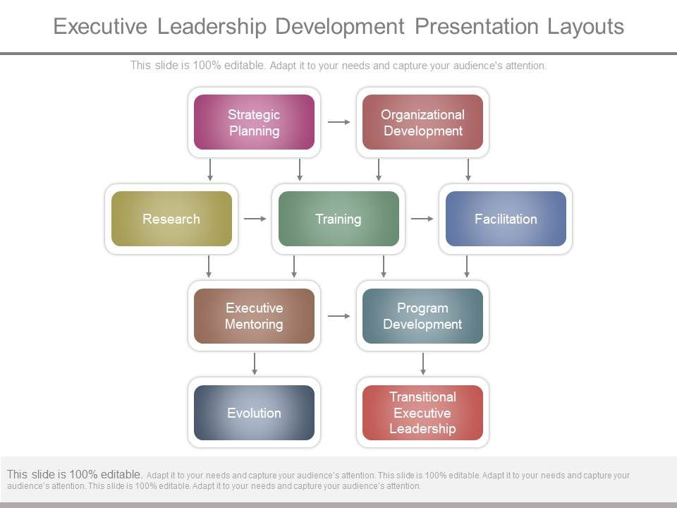 Executive Leadership Development Presentation Layouts Templates