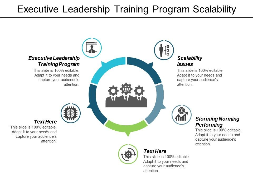 Executive Leadership Training Program Scalability Issues Storming