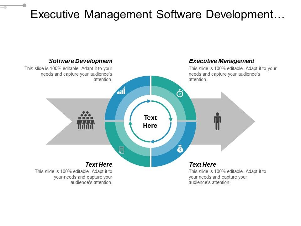 Executive Management Software Development Supply Chain