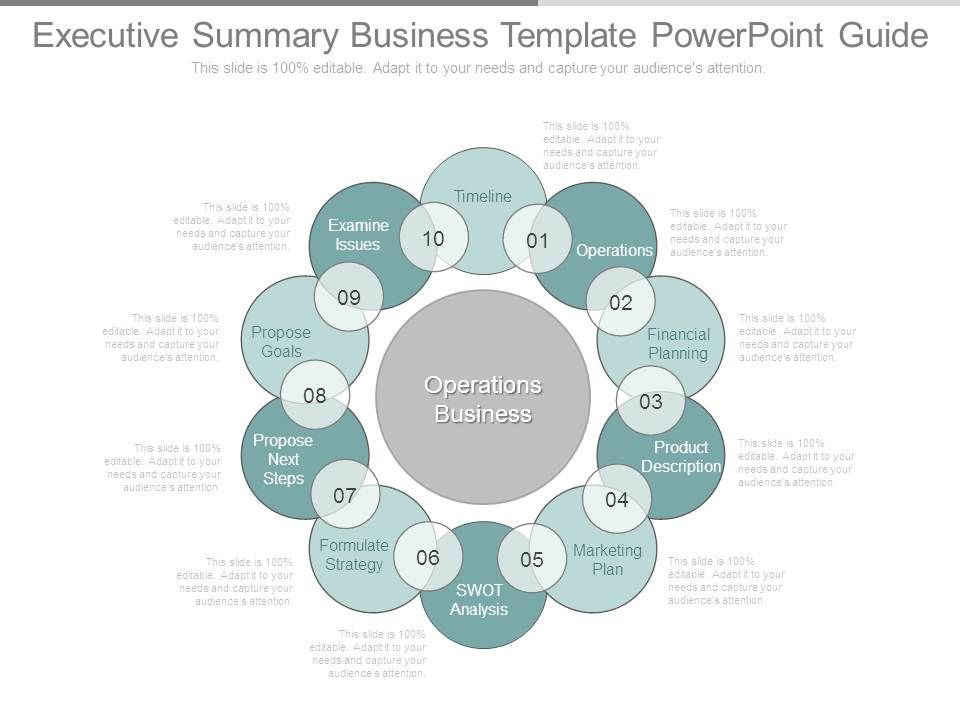 executive_summary_business_template_powerpoint_guide_Slide01