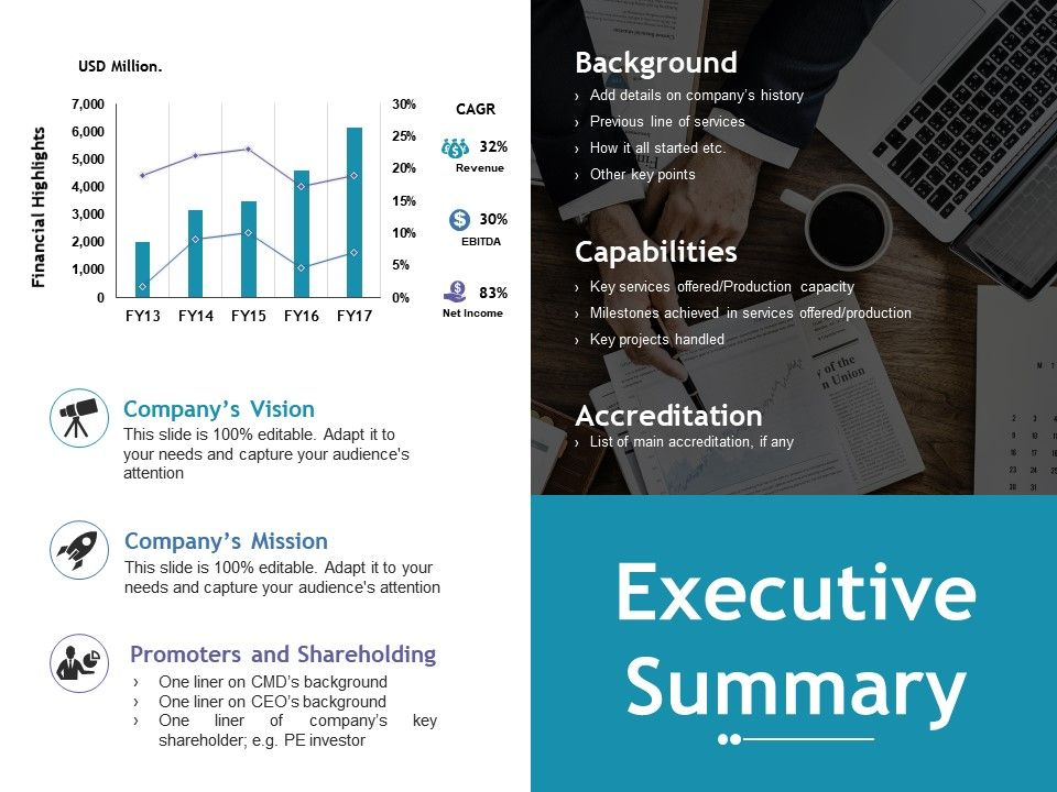 executive summary ppt file example topics powerpoint presentation