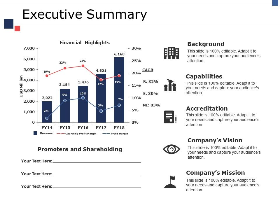 executive_summary_ppt_pictures_icon_Slide01