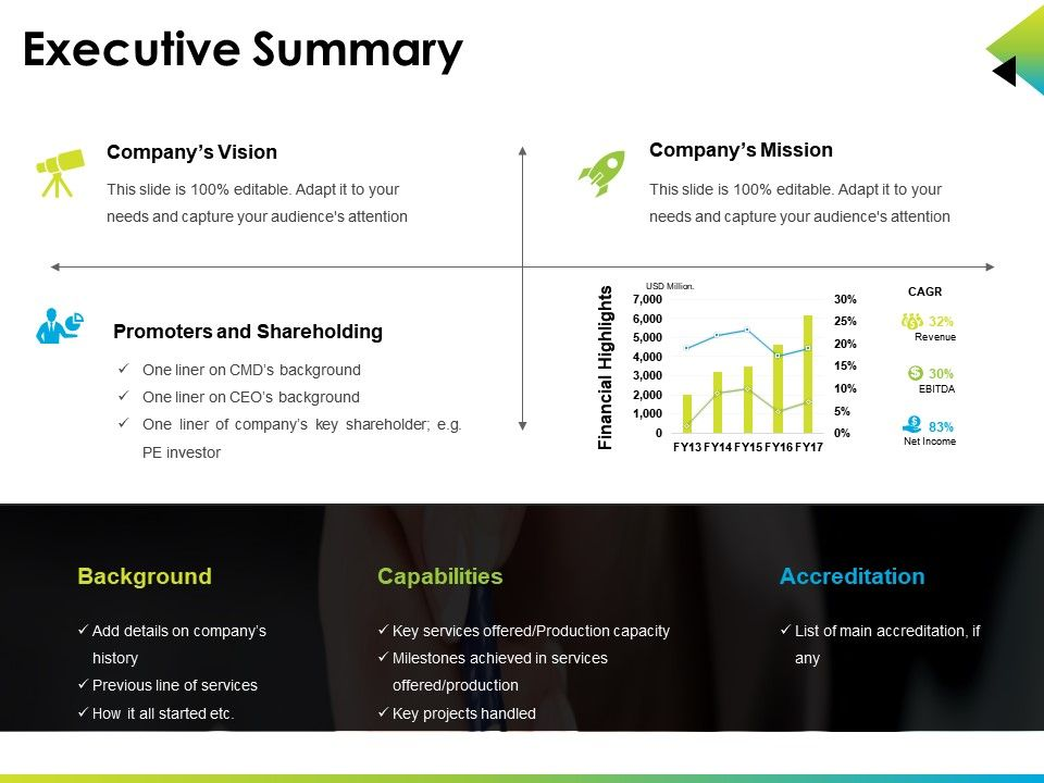 executive summary ppt presentation examples powerpoint