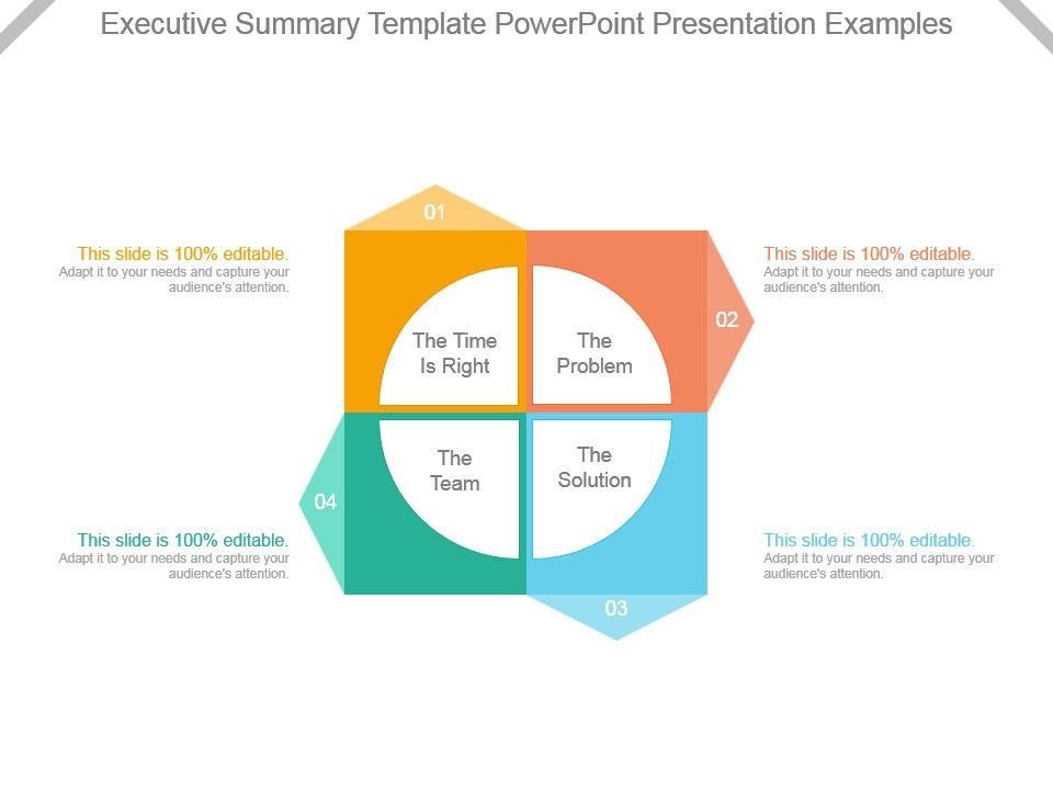 Executive Summary Template Powerpoint Presentation Examples