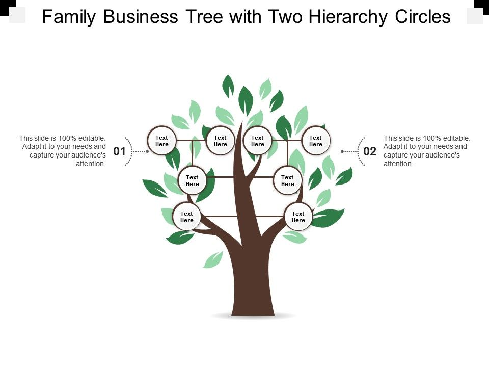 Family Business Tree With Two Hierarchy Circles | PowerPoint Slide
