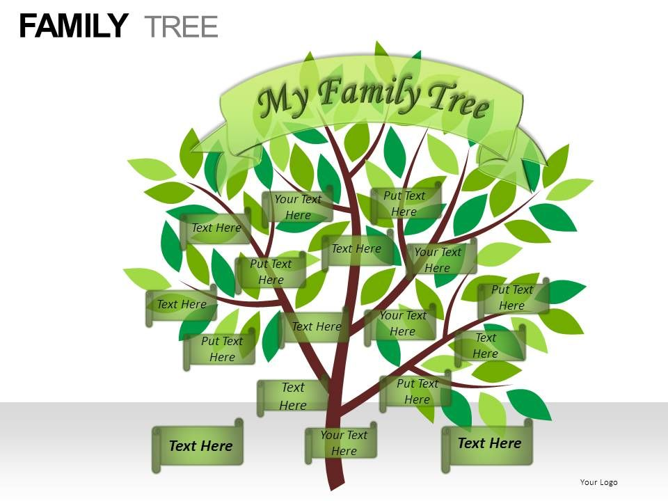 family_tree_powerpoint_presentation_slides_Slide08