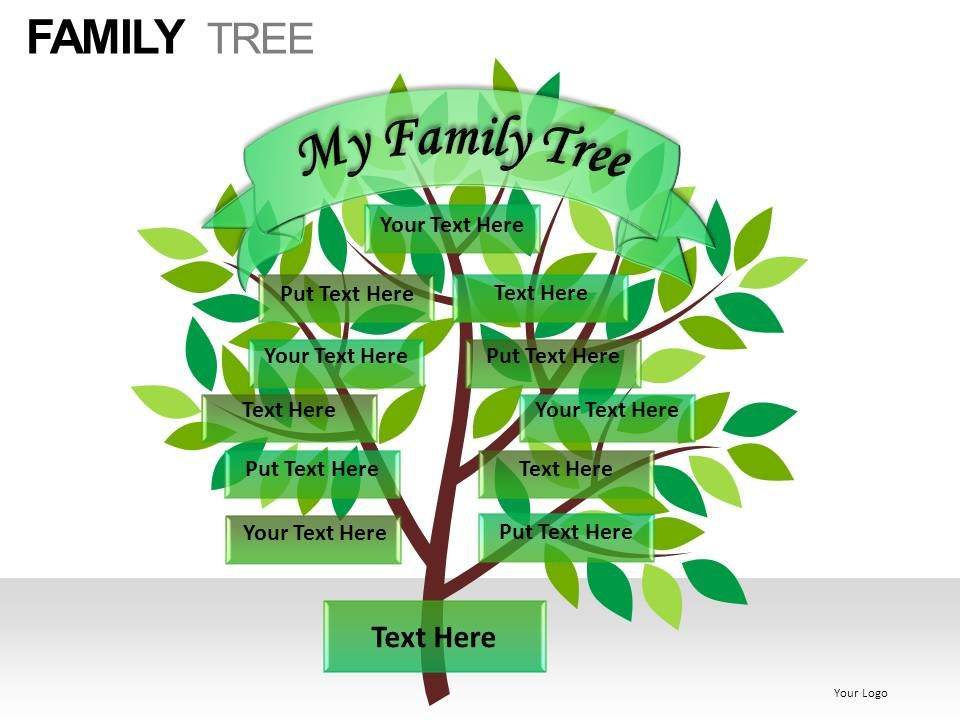 family_tree_powerpoint_presentation_slides_Slide09