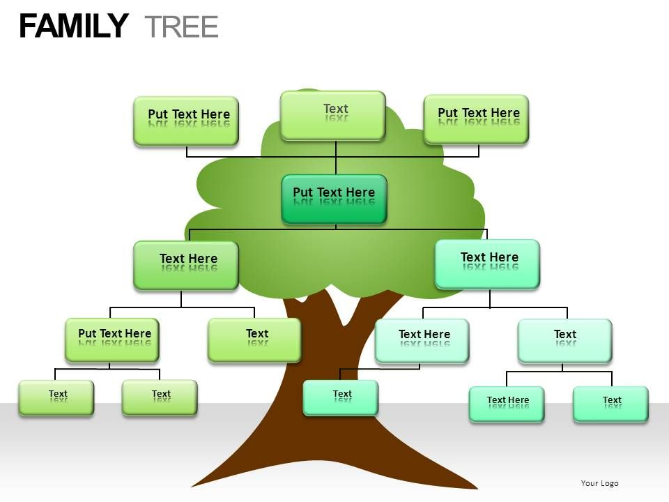 family_tree_powerpoint_presentation_slides_Slide24