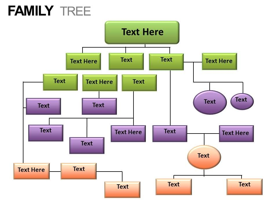 family_tree_powerpoint_presentation_slides_Slide25