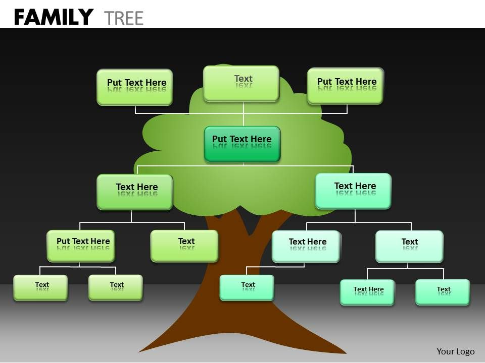 family tree ppt 24 powerpoint slide template presentation