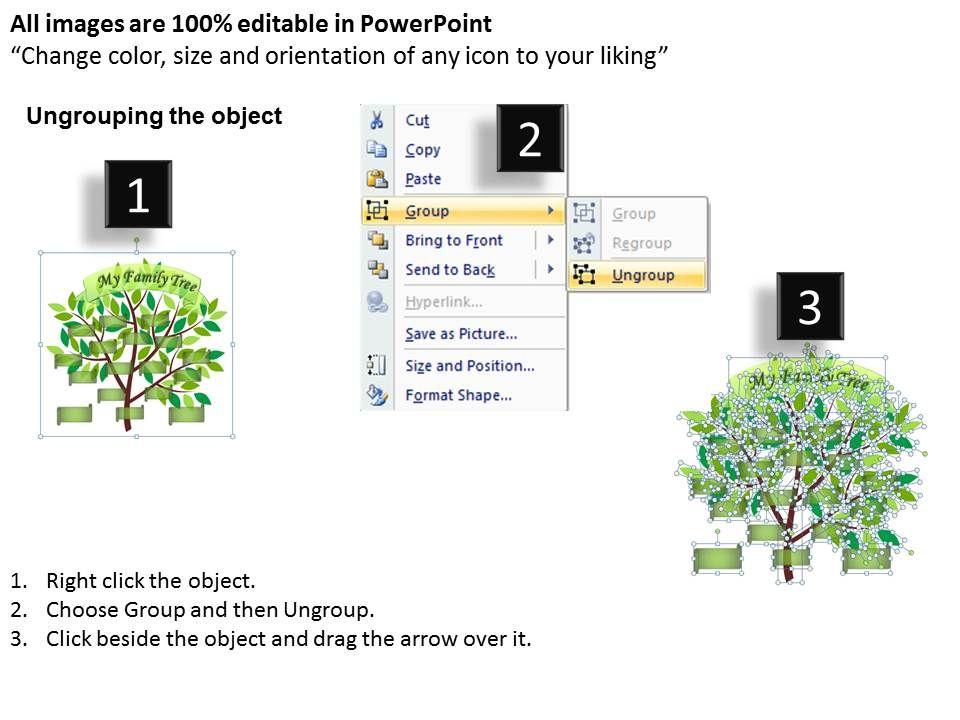 Family Tree Ppt 8 Slide02 Slide03 Slide01