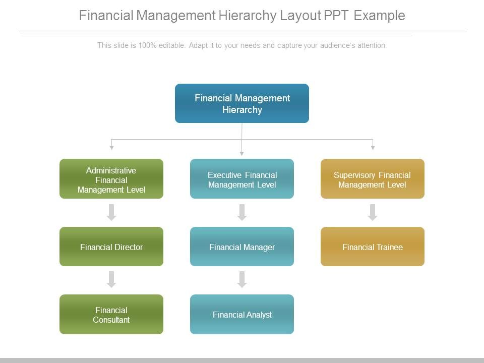financial_management_hierarchy_layout_ppt_example_Slide01 30300969 style hierarchy 1 many 3 piece powerpoint presentation