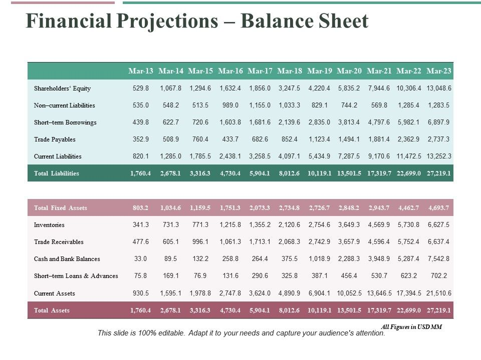 Financial Projections Balance Sheet Ppt Professional Example Topics Powerpoint Presentation Slides Ppt Slides Graphics Sample Ppt Files Template Slide