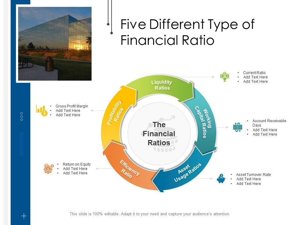 Five Different Type Of Financial Ratio