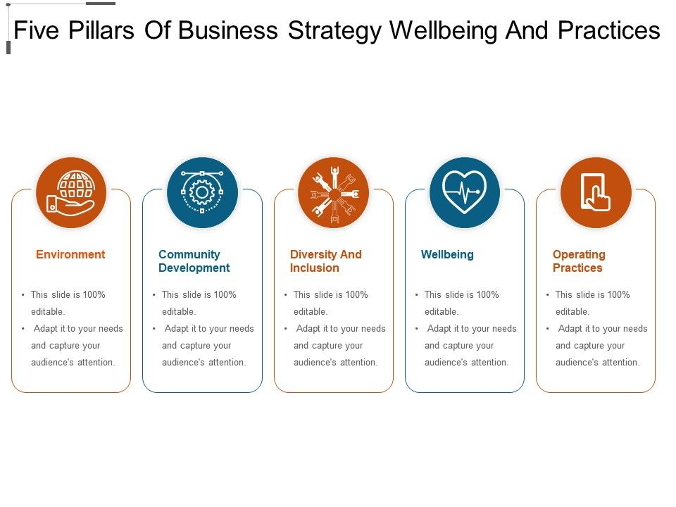 five_pillars_of_business_strategy_wellbeing_and_practices_Slide01