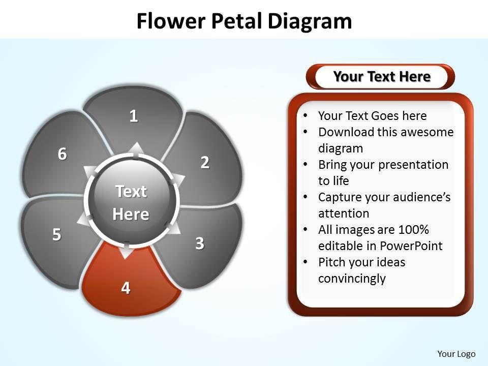 Flower petal diagram editable powerpoint slides templates slide05 flowerpetaldiagrameditablepowerpointslidestemplatesslide05 flowerpetaldiagrameditablepowerpointslidestemplatesslide05 ccuart Images
