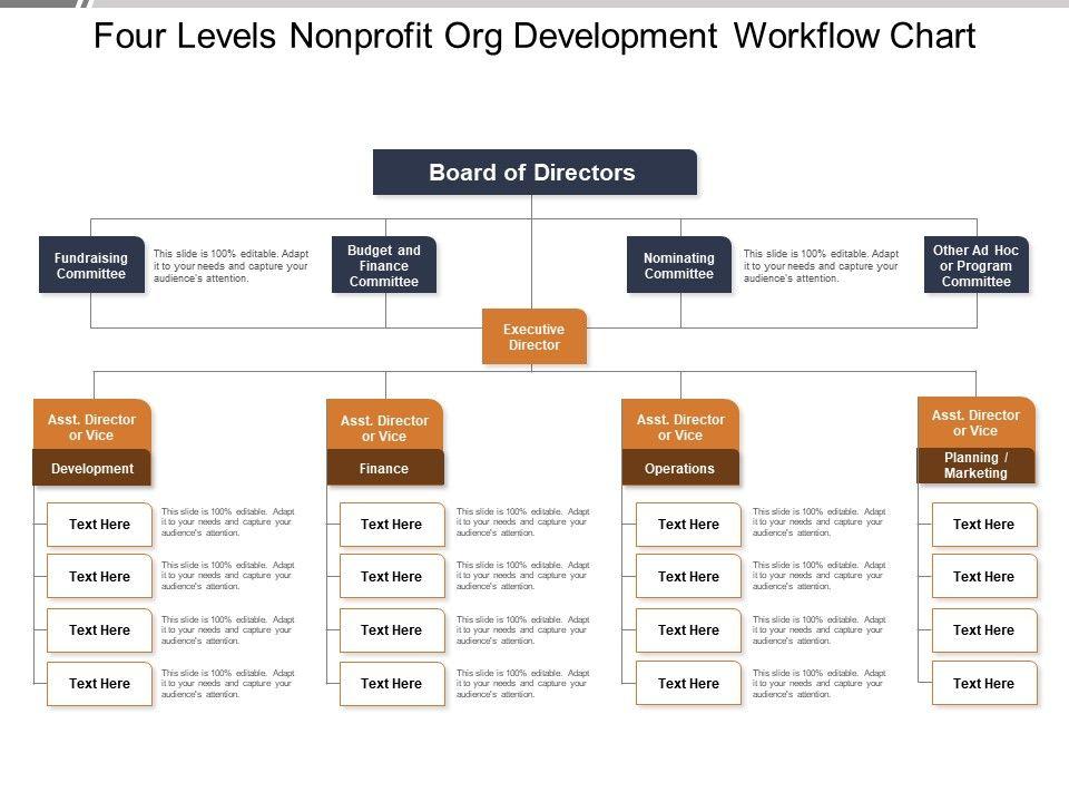 Four Levels Nonprofit Org Development