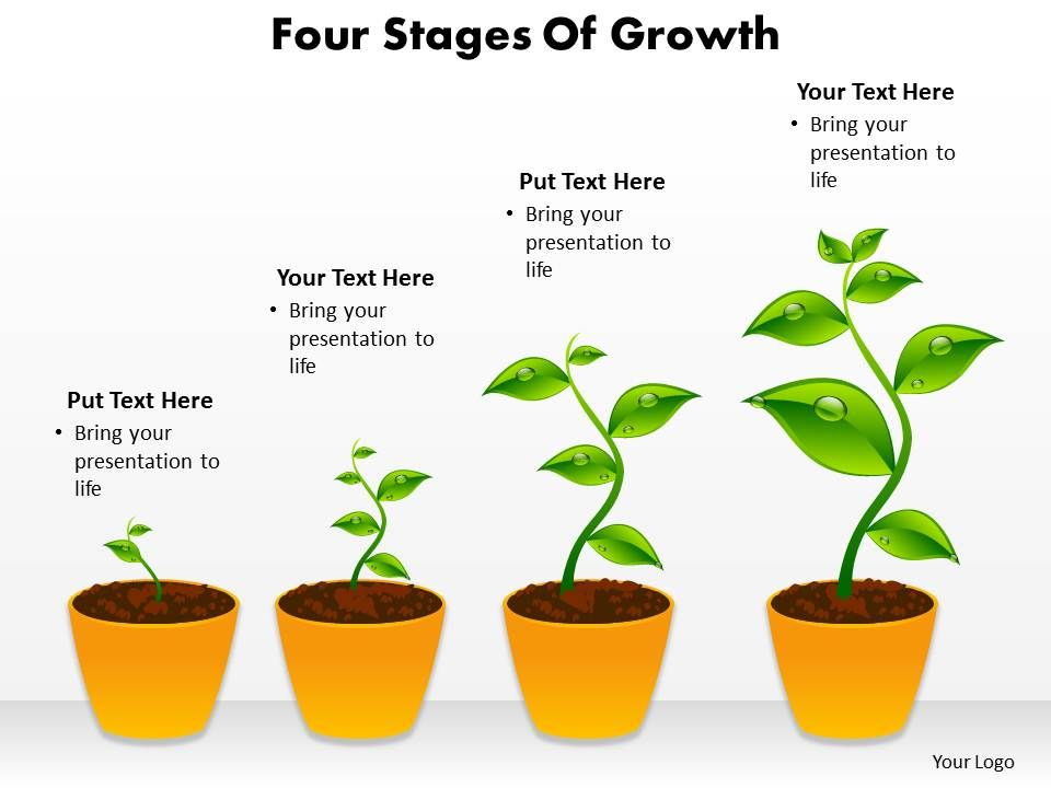 four stages of growth shown by plants growing in pots powerpoint rh slideteam net plant growth chamber diagram Science Fair Plant Growth Chart