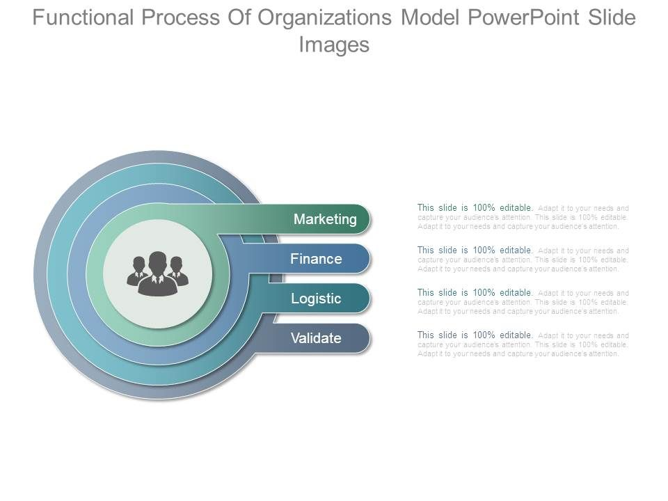 functional_process_of_organizations_model_powerpoint_slide_images_Slide01
