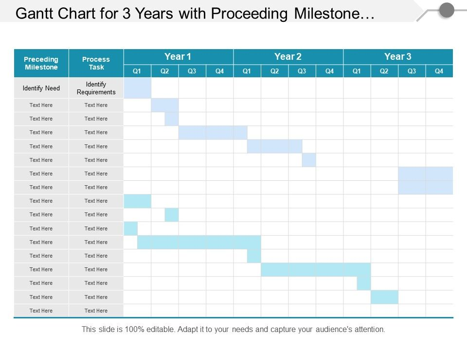 Gantt Chart For 3 Years With Proceeding Milestone And
