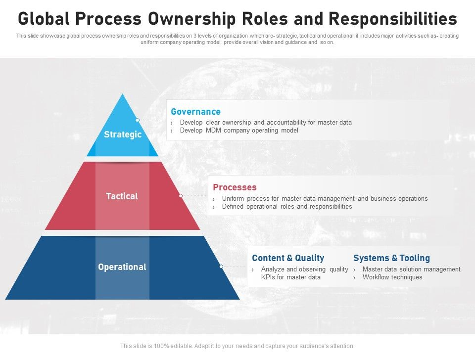 Global Process Ownership Roles And Responsibilities