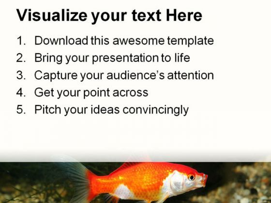 golden fish01 animals powerpoint templates and powerpoint