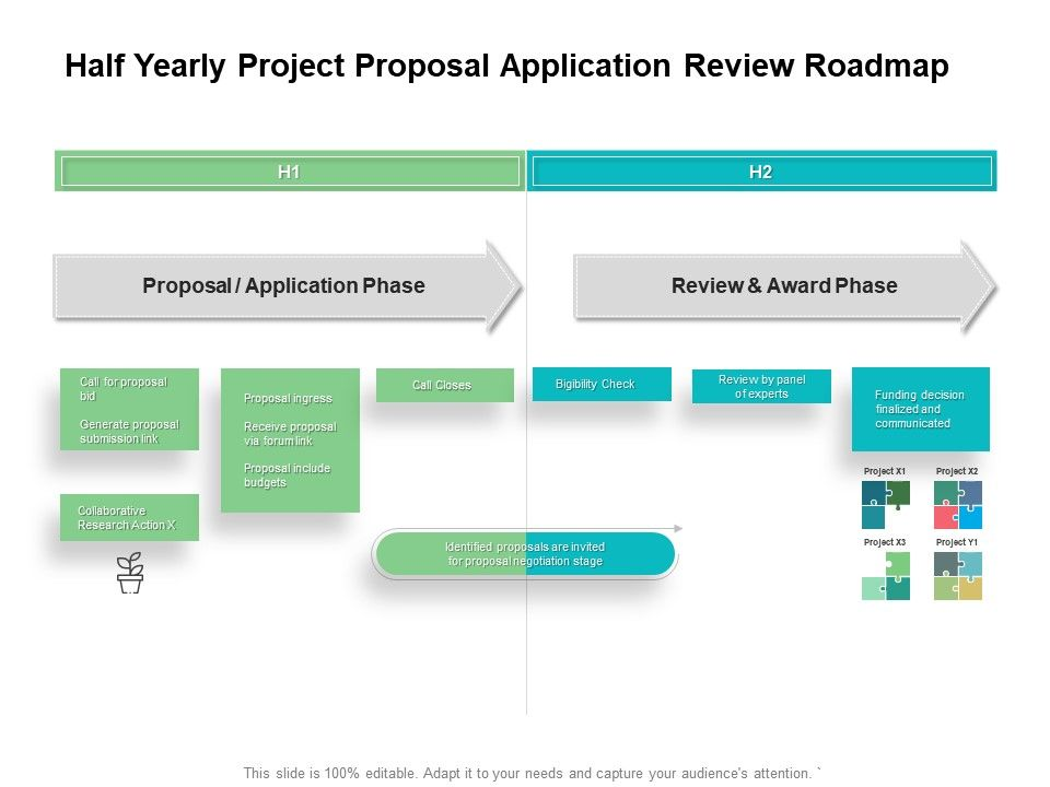 Half Yearly Project Proposal Application Review Roadmap
