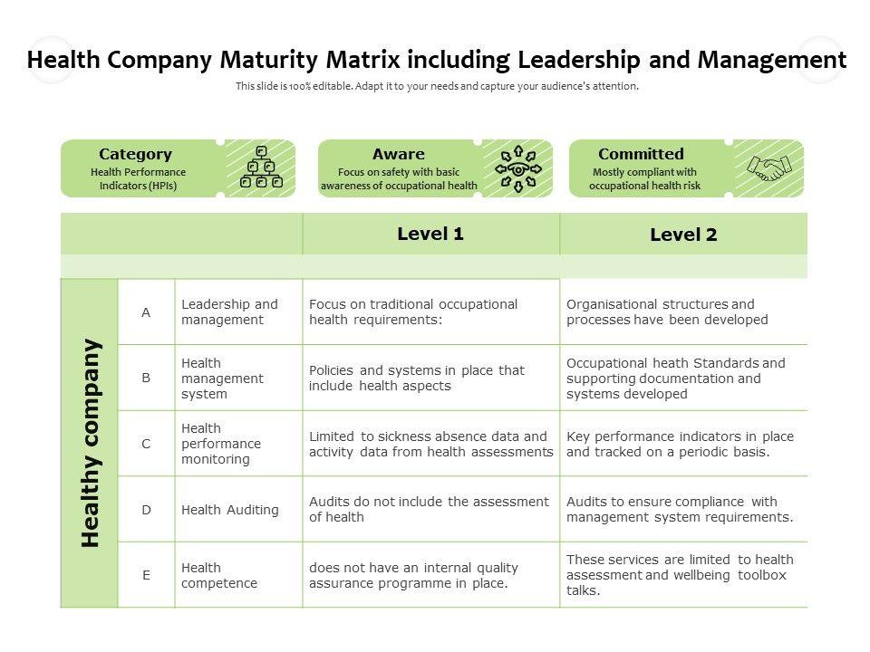 Health Company Maturity Matrix Including Leadership And Management